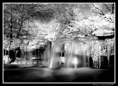 Infrared Waterfall Wide Angle (Shawn O'Connell Photography) Tags: blackandwhite water beauty digital japanesegarden waterfall movement texas nikond70 infrared 72 fortworth botanicgardens hoya shawnoconnell shawnoconnellphotography