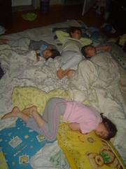 Sleeping Beauties  B (wnlong) Tags: sleeping trashdump studytable