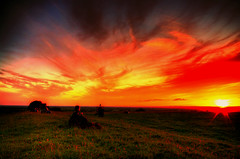 Hill of Tara Solstice Sunset. (Irishphotographer) Tags: ireland sunset red sky art archaeology colors clouds landscape yahoo google interesting ancient searchthebest kim fort colorfull eire explore solstice stunning celtic msn 2008 reboot sureal hdr ask eyecatcher myths jeeves irishart day183 day190 day191 kinkade catart flickrsbest beautifulireland hdrunlimited exploretop20 top20ireland day2day worldbest irishphotographer anawesomeshot anawsomeshot besthdr july2008 diamondclassphotographer theunforgettablepictures imagesofireland overtheexcellence picturesofireland pentaxk20d earlyireland shatwell fridayspic kimshatwell irishcalender09 calendarofireland breathtakingphotosofnature beautifulirelandcalander wwwdoublevisionimageswebscom