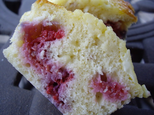 Raspberry Cheesecake Muffin