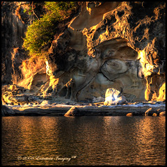 Hornby Shoreline (ecstaticist) Tags: cliff canada reflection tree beach water rock island gold carved sandstone bravo raw bc britishcolumbia ripple wave erosion formation casio shore hornby photomatix tonemapped tonemapping pseudohdr exf1