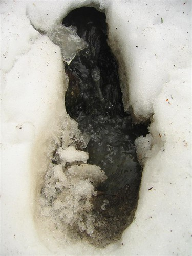 Footprint in the snow at Barberville Falls