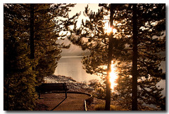 Sunset Bench (Ross Forsyth - tigerfastimagery) Tags: trees sunset usa lake bench seat silhouettes wyoming grandtetons jacksonlake