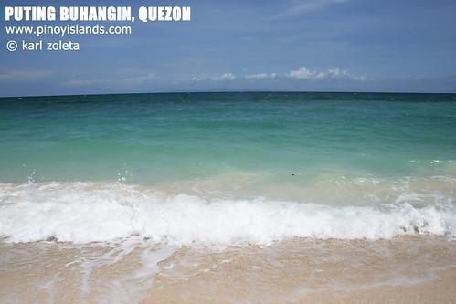 puting_buhangin_quezon4