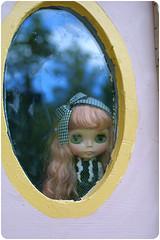 Lulu at the window