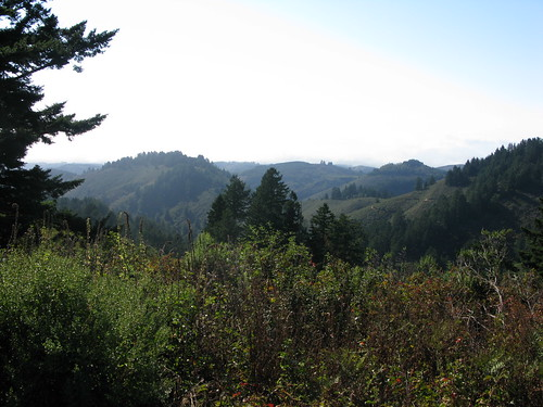 Purisima Creek