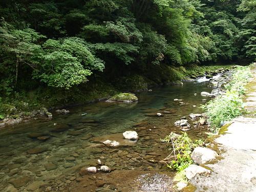 nanadaru (9)