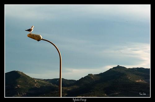 Fotografía: Sidi Guariach