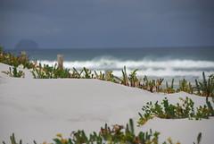 Squeaky Beach, Wilsons Prom