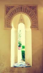 نافذة على الحدائق (Julie™) Tags: spain julie andalucia malaga alcazaba espania الأندلس أسبانيا القصبة مالقة
