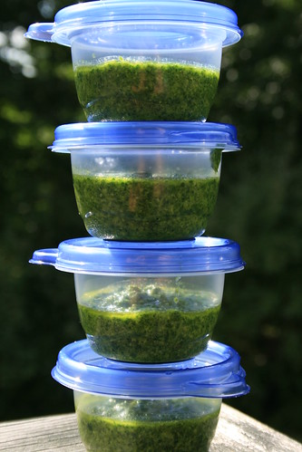 Kale Pesto