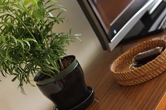 livingroom-053a