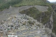 Machu Picchu 176