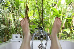 My favorite bathtub in the world (or do you kn...