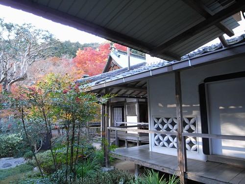 正暦寺(2008紅葉)-19