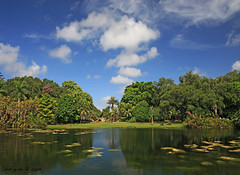 Fairchild Tropical Garden (iCamPix.Net) Tags: vacation canon landscape florida miami lakes explore familyfun frontpage professionalphotographer exoticplants 7956 explore9 fairchildtropicalgarden markiii1ds