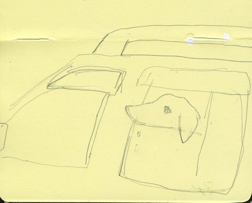 dog in car by Bricoleur's Daughter