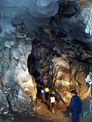 pet cave thailand03