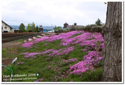 Hokkaido_0518