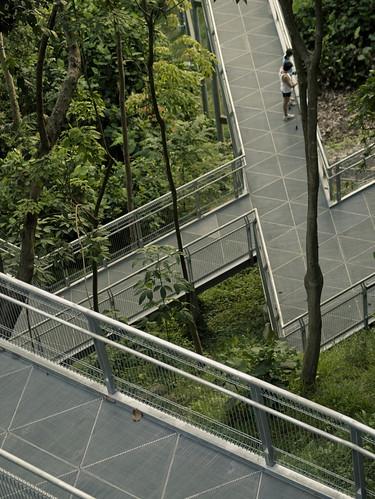 Intersecting walkway