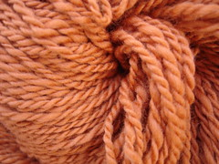 Orange Merino closeup