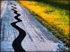 driving barefoot (dbthayer) Tags: road ohio topf25 rural topf50 topf75 dof pavement rubber blogged roadside topf100 interestingness6 i500 ruralentertainment btwdrivingbarefootisnotillegalinohio