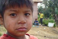 guarani 3 (mario kojima) Tags: boy sãopaulo tribe menino indio tribo indigenous aldeia h9 guarani mariokojima