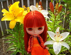 What?! Mom, there are plain white and yellow lillies too?!