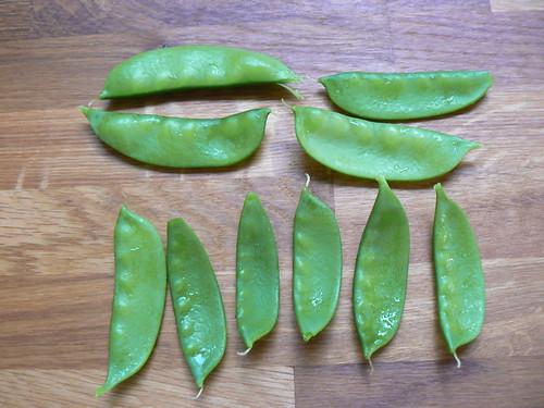 Harvest - Mangetout