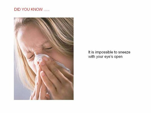 interesting facts sneeze
