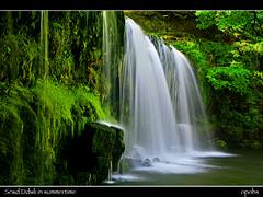 Scwd Ddwli in summertime (opobs) Tags: morning sunlight water southwales wales waterfall rocks explore rays wfc pontneddfechan neathvalley welshflickrcymru michaelstokes opobs vosplusbellesphotos scwdddwli
