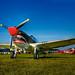Frasca P-40