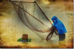 HDR + Texture : August Harvest (Shabbir Ferdous) Tags: art texture photographer hdr bangladeshi canoneos5d ef70200mmf28lisusm shabbirferdous wwwshabbirferdouscom shabbirferdouscom