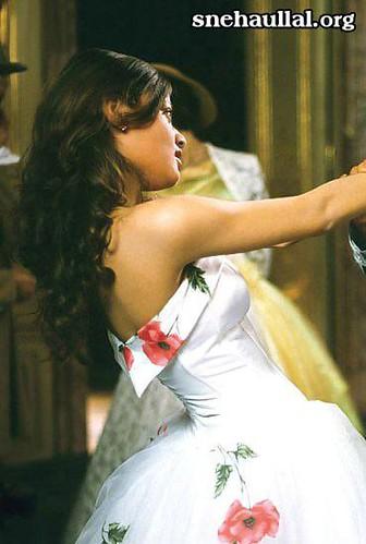 Sneha Ullal in floral gown