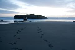 20070320-IMG_4724 (SeattliteFromNY) Tags: ocean ca sand rocks pacific dusk footprints 2007 longexp oneframe
