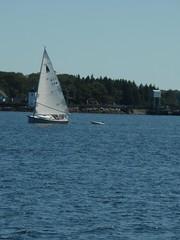More boats (rfournier72) Tags: maine islesboro