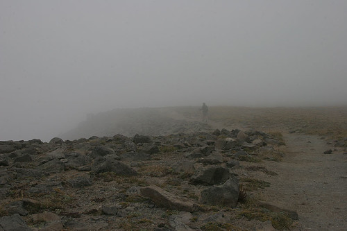 Fog on First Burroughs