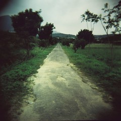 On The Road (Fabienne Lin) Tags: road 120 film nature holga lomo lomography fuji squareformat hsintien 120gcnf  holgagrphay hloga120gcnf