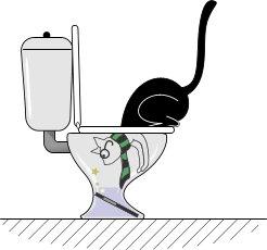 gatos hacen magia!