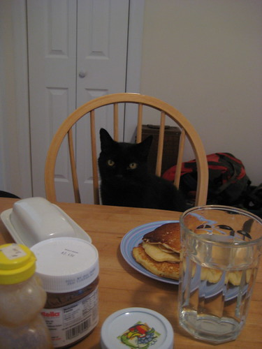 Otis loves pancakes.