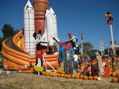 Piumpkin Path with Massive  IP Violations IMG_1799.JPG Photo