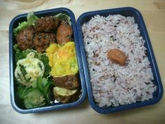 Green-brown bento (skamegu) Tags: food chicken rice broccoli bento japanesefood     bentos