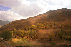 landscape in dizin(north of iran) (ahmadshakerin) Tags: autumn light sky panorama sun detail nature water beauty smile leaves rose digital butterfly landscape photo spring highlands fdsflickrtoys rice iran north hard deadleaves bordeaux violet sunny persia explore rays ahmad whitehorse hilight naturesfinest firstquality digitall mouseion supershot explore500 specnature rosesky photographyrocks golddragon abigfave platinumphoto anawesomeshot colorphotoaward impressedbeauty aplusphoto diamondclassphotographer flickrdiamond photoexplore iranmapcom