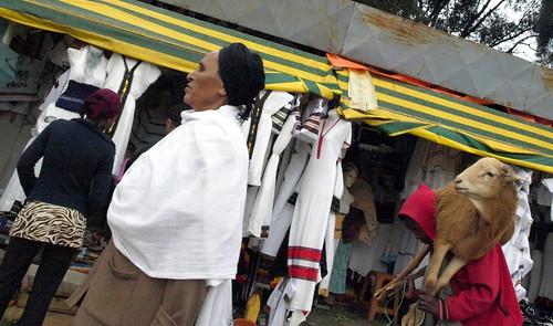 Carnero recién comprado en Addis Abeba