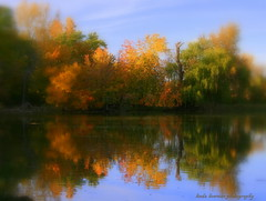 I saw a vision in my dream (lynne_b) Tags: park autumn trees light sky sun lake reflection fall water evening illinois pond midwest seasons farm tlc settingsun serenitynow explored twtme volkenheritagefarm springvalleynaturecenter vosplusbellesphotos