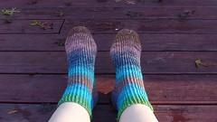silk garden socks 1