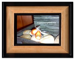 anillo plata ley mariposa naranja (magearma) Tags: anillos