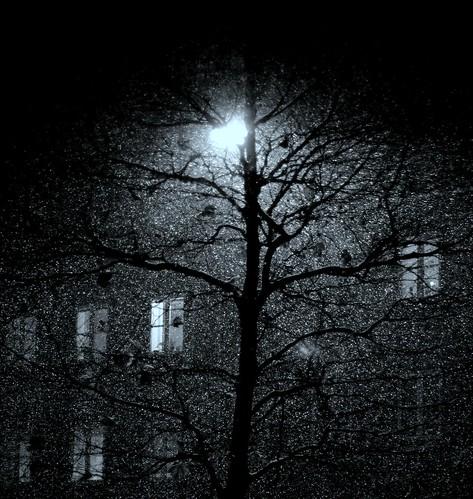 déjà la nuit by M.*.