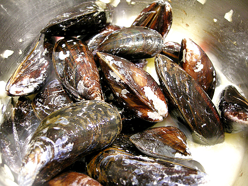淡菜和鱈魚-081211