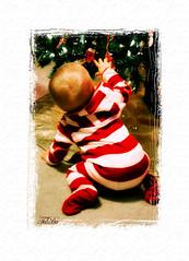Striped Pajamas (kyshots) Tags: christmas baby tree girl nikon infant child kentucky stripes first ornaments pjs babysfirstchristmas pajamas striped oldfashioned d40x